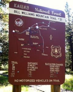 Bill Williams Mountain trailhead